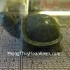 Rùa ngọc xanh nhỏ R078