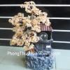 Cây thạch anh vàng hạt nhỏ, phong thủy luân HCA255