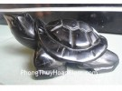 Rùa hắc ngà trơn HM080