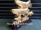 Cá kim long vàng 6 con H283G