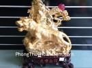 Hổ vàng trên vách đá H351G