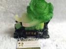 Bắp cải nhỏ có thiềm thừ H183G