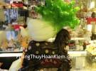 Bắp cải trên túi tiền màu gỗ H203G