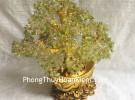 Cây tài lộc đá cẩm lãm đế nén vàng KC075
