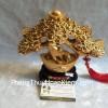 Cây nén vàng châu báu H511G