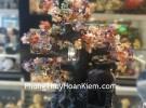 Cây tài lộc phong thủy luân nhiều màu KC001
