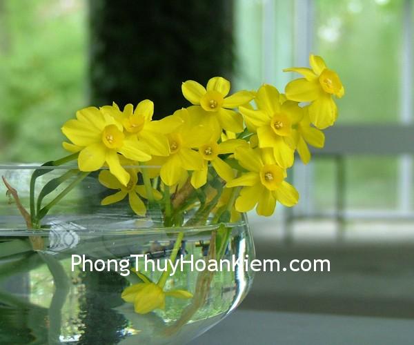 hoa thuy tien 16 Tranh hoa thuỷ tiên