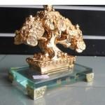 H512G 2 150x150 Cây đồng tiền vàng nhỏ H512G