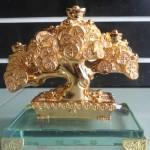 H512G 3 150x150 Cây đồng tiền vàng nhỏ H512G