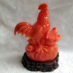 g021a.3 150x150 Gia đình gà đỏ trên đá G021A