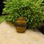 s6484 6.1 150x150 Phật bản mệnh đá mắt mèo nhỏ Như Lai Đại Nhật (Mùi+Thân) S6484 6