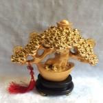 h511g.2 150x150 Cây nén vàng châu báu H511G