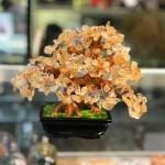 kc108.1 150x150 Cây thạch anh vàng nhỏ dáng truyền thống (cây chiêu tài) KC108
