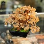 kc108.2 150x150 Cây thạch anh vàng nhỏ dáng truyền thống (cây chiêu tài) KC108