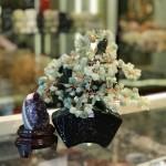 kc119 150x150 Cây đông linh thân bonsai chậu kiểu nhật mới (Phước) KC119