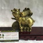 d300 150x150 Đại đế heo đồng cõng bắp cải trên đồng tiền vàng(chiêu tài tấn bảo) D300
