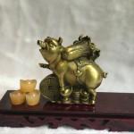 d300.1 150x150 Đại đế heo đồng cõng bắp cải trên đồng tiền vàng(chiêu tài tấn bảo) D300